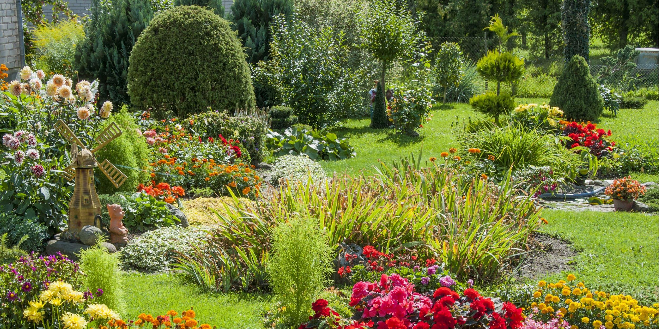 bewateren tuin