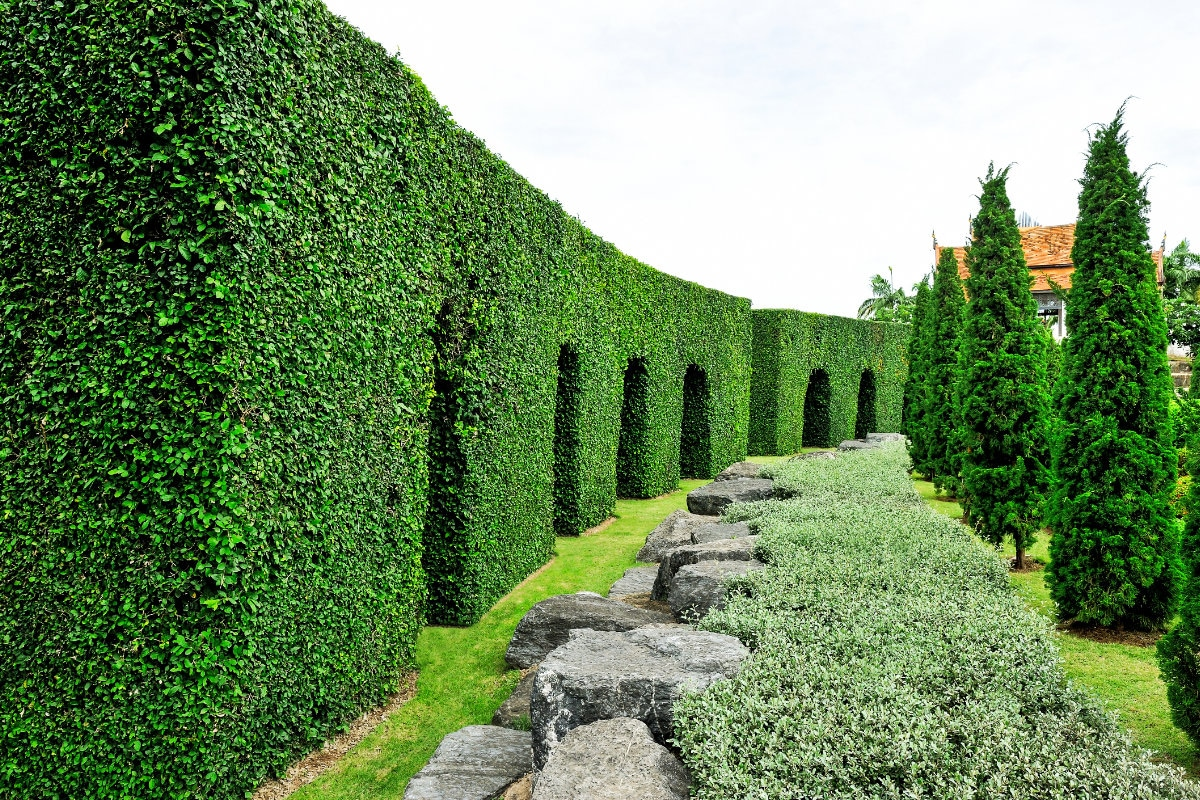 onderhoudscontract tuin
